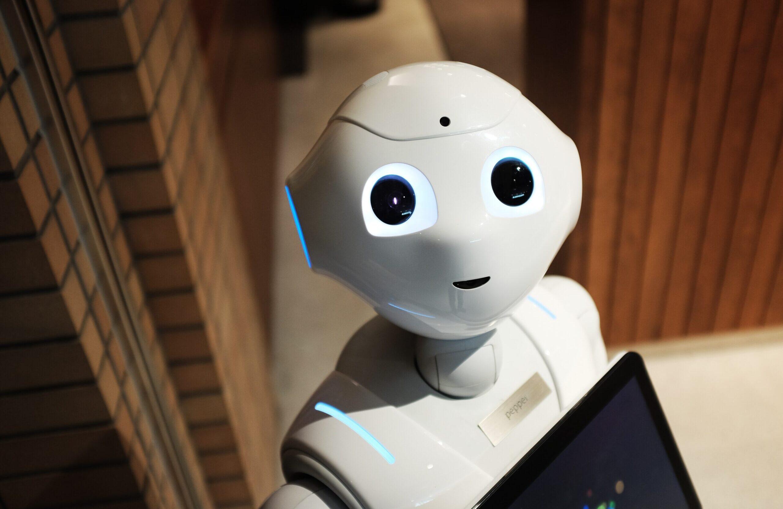 Bot 3lox